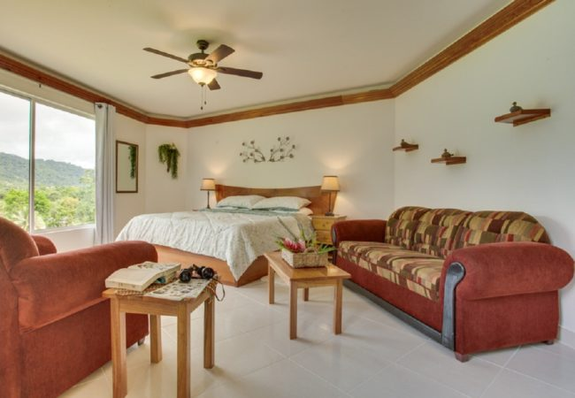 antelope luxury suite at bocawina belize