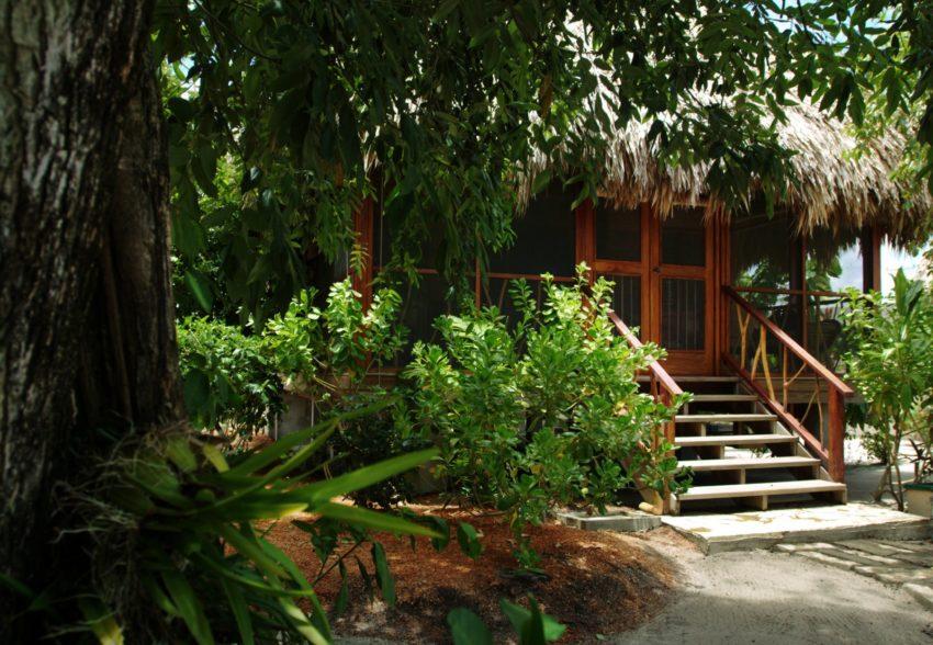 garden view cottage at turtle inn beach resort