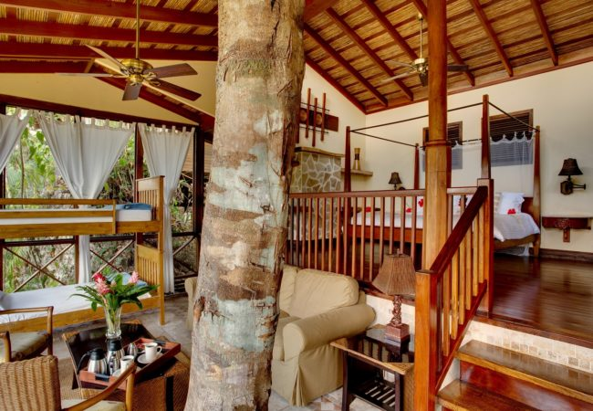Riverview Treehouse