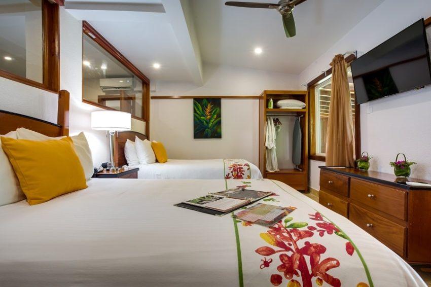 Jungle View Suite, San Ignacio Resort Hotel